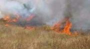 سليانة: السيطرة على حريق أتى على 5 هكتارات من الحصيدة و103 حزمة تبن بمنطقة الفجة