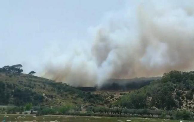 رئيس بلدية اريانة: الكشف عن ممرات خفية تستعمل للنفاذ الى غابة سيدي عمر برواد واشعال النيران فيها